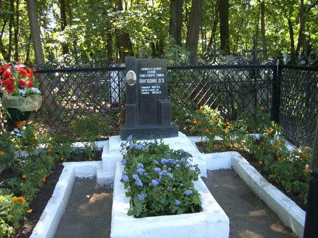 могила Д.Д. Погодина